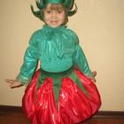 Новогодний карнавальный детский костюм Помидор мальчик и девочка. Только прокат