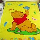 Воздушный флисовый плед Винни Пух для детей в наличии.