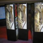 Энциклопедия «В мире дикой природы», состоящая из 3 томов.