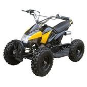 Электромобиль квадроцикл Profi HB-6 Eatv 500