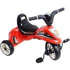 Трехколесный велосипед Profi Trike Titan M5344,5343,5345,5346