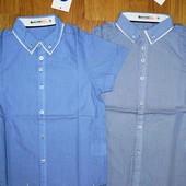 Рубашка для мальчиков 98,104,116р.1173