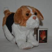 FR Интерактивный игривый щенок песик Furreal Friends Он шикарный