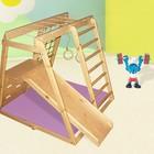 Детский спортивно - игровой комплекс Гномик