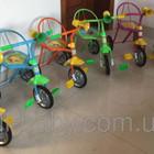 Велосипед трехколесный Tilly Trike Гвоздик
