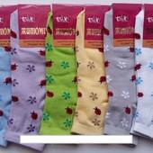 Носки женские демисезонные х/б Талько, 23-25 размер, ассорти