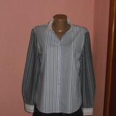 рубашка,блуза р-р 12 коттон Erfo
