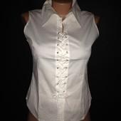 Блузка женская Новая 8 цветов M-XXL распродажа