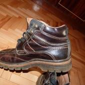 Шкіряні демисезонні черевички р.43