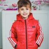 Курточка детская спортивная 50 (4 цвета)