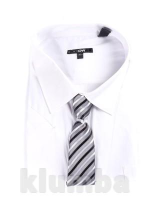 Распродажа  - Тенниска белая + галстук  размер 62-70 по вороту 48-50 от Kiabi большой размер фото №1
