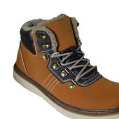 Мужские зимние ботинки Arrigobello Польша размеры 41-46 № A80058 brown