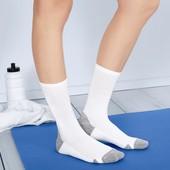 Функциональные спортивные носки 36-41,43-46 Tchibo Германия