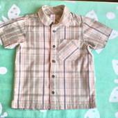Рубашка с коротким рукавом Adams для мальчика 3-4 года, реально до роста 110