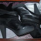 шикарные ботинки Carlo Pazolini