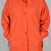 Куртка (весна,осень)