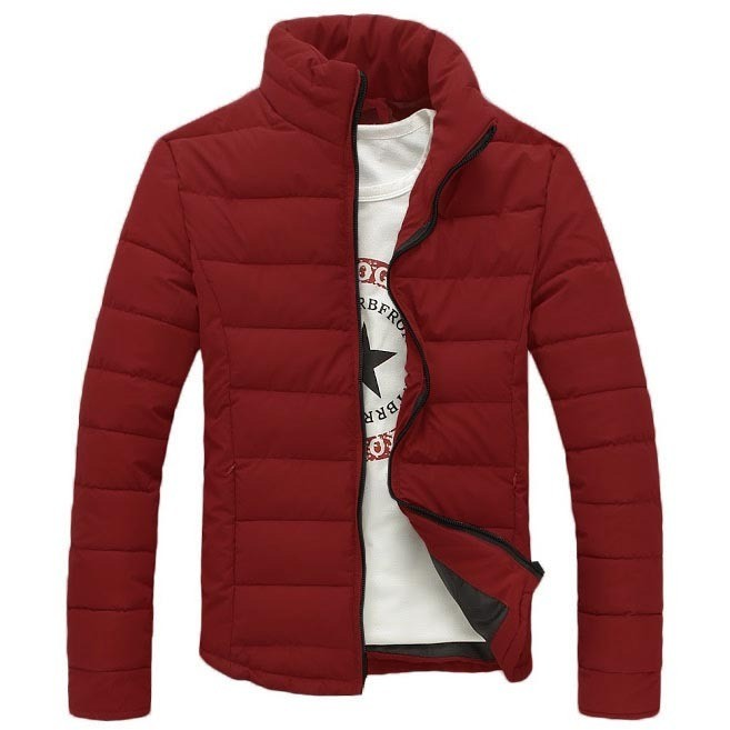 Дутая мужская куртка 3608 Стиляга  фото №1