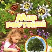 Мир растений. Лучшая энциклопедия в картинках для малышей.