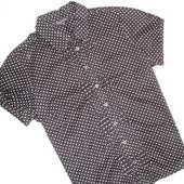 Блуза в горошек Debenhams ( L )