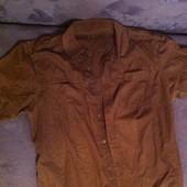 Рубашка с коротким рукавом (L)