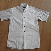 Фирменная рубашка Calyx  М (38)