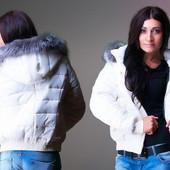Куртка зима . Короткая. С мехом на капюшоне. В расцветках.Размеры:42, 44, 46, 48, 50 (1б