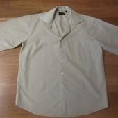 Рубашка E'nriko L 41-42 р.
