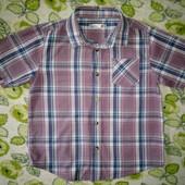 Рубашка M&Co  на 6-7лет(122см)!!!100% х\б.