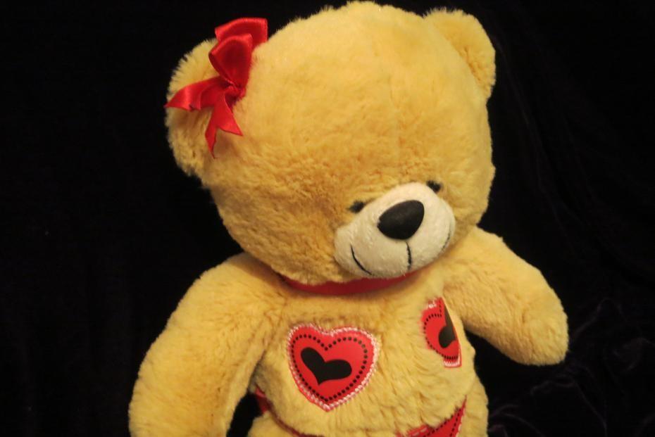 Медведь.ведмідь.мішка.мишка.мягкая игрушка.мягка іграшка.мягкие игрушки.card factory фото №1