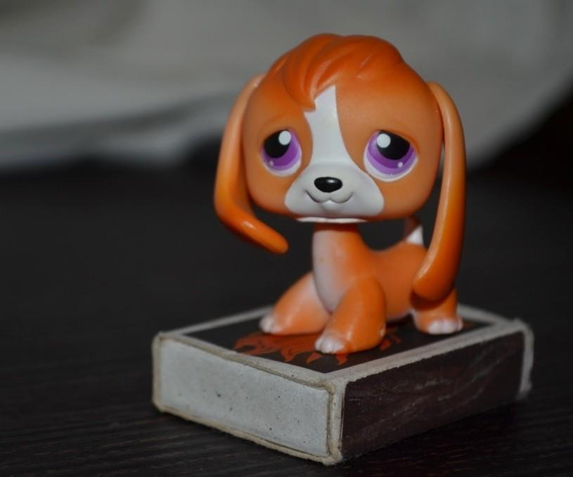 Пет шопы pet shop игрушки зоомагазин littlest pet shop lps собачка песик стоячка фото №1