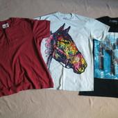 Фирменная футболка Eddie bauer и mountain L- XXL