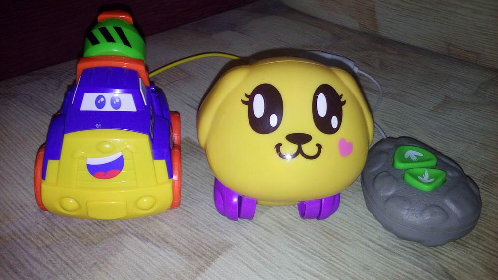 Машинка собачка на управлении фото №1