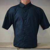 Мужская рубашка с коротким рукавом Zalora. Разные цвета.