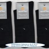 Носки мужские, Мисюренко, 3 модели, х/б деми, 25, 27, 29, 31 р.
