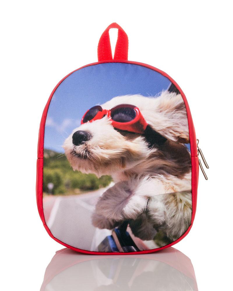 Рюкзак детский/ собачка в очках фото №1