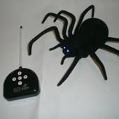 Радиоуправляемый паук  Черная Вдова
