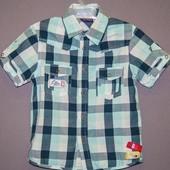 Рубашка 4 года Sercent Major