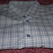 Красивая новая рубашка с коротким рукавом