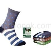 Житомирские носки Буратино