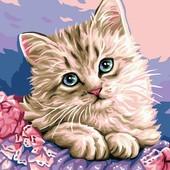 Картина по номерам Turbo Милый котик VK118