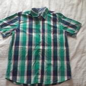 Human nature мужская рубашка / тенниска р XXL хлопок