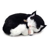 Дышащий черно - белый котик Perfect Petzzz