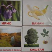 Комплект карточек Вундеркинд с пеленок