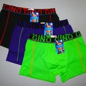 Трусы мужские боксеры GINO L раз
