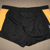 Sports FastDry (L)  спортивные шорты для бега мужские