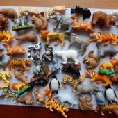 Животные. Много. Animal Planet.