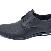 Мужские туфли с перфорацией Van Kristi 343 синие