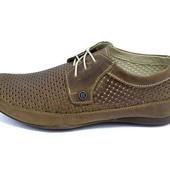 Мужскте туфли с прфорацией Van Kristi Premium eXp