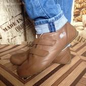 Lacoste кроссовки 39, 5 размер 25 см унисекс Таиланд