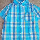 Рубашки Rebel и SD 80-86 см